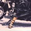 Harley - 1995, cm. 90x60