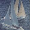 Azzurra - 1992, cm. 70x100