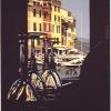 Dal Delfino - 1992, cm. 60x90