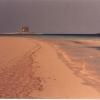 La Pelosa di Stintino - 1988, cm. 60x50