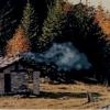 La polenta - 2002, cm. 100x50