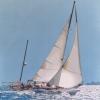 Mait II - 2003, cm. 100x100