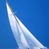 Candida - 2005, cm. 70x100