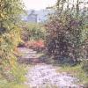 La passeggiata al vecchio mulino - 2006, cm. 55x45