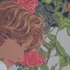Le quattro rose, trenta - 2011 - cm 70x50