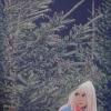Alla ricerca di Babbo Natale - 2011 - cm 70x70