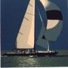 Regata sul mare verde - 1988 - cm 70x70