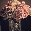 Le ortensie d'autunno - 1996 - cm 70x70