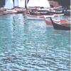 Piccole vele a Portofino - 2001 - cm 50x70