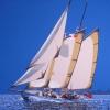 Lelantina - 2008 - cm 100x100