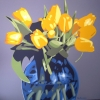 Dodici tulipani gialli nel vaso blu - 2020 - cm 100x100