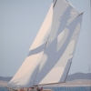Varuna, ali di luce - 2020 - cm 80x100