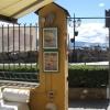 gatto-tai-terrazza-studio-e-galleia-santa-017